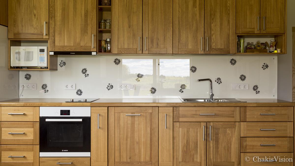Aizsargpanelis virtuvei ar paša zīmējumu