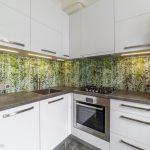 Virtuves dekoratīvie stikla paneļi ar apdruku
